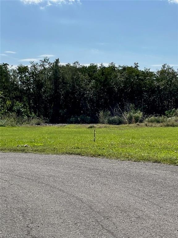 7995 Gabion Court Property Photo - BOKEELIA, FL real estate listing