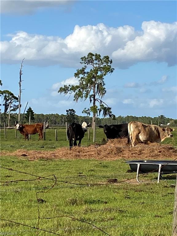110 Angus Road Property Photo - VENUS, FL real estate listing