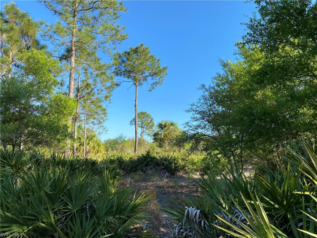 2100 Al Don Farming Road Property Photo - CLEWISTON, FL real estate listing