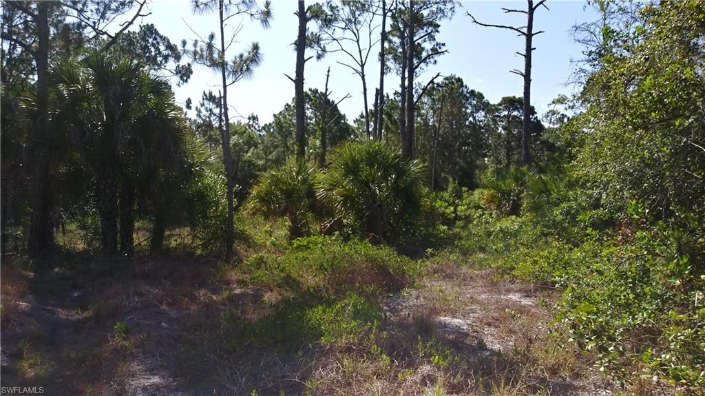 545 N Kennel Street Property Photo - MONTURA RANCHES, FL real estate listing