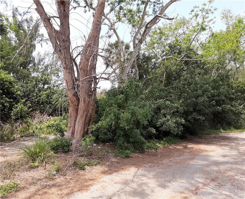 14501 Tamarac Drive Property Photo - BOKEELIA, FL real estate listing
