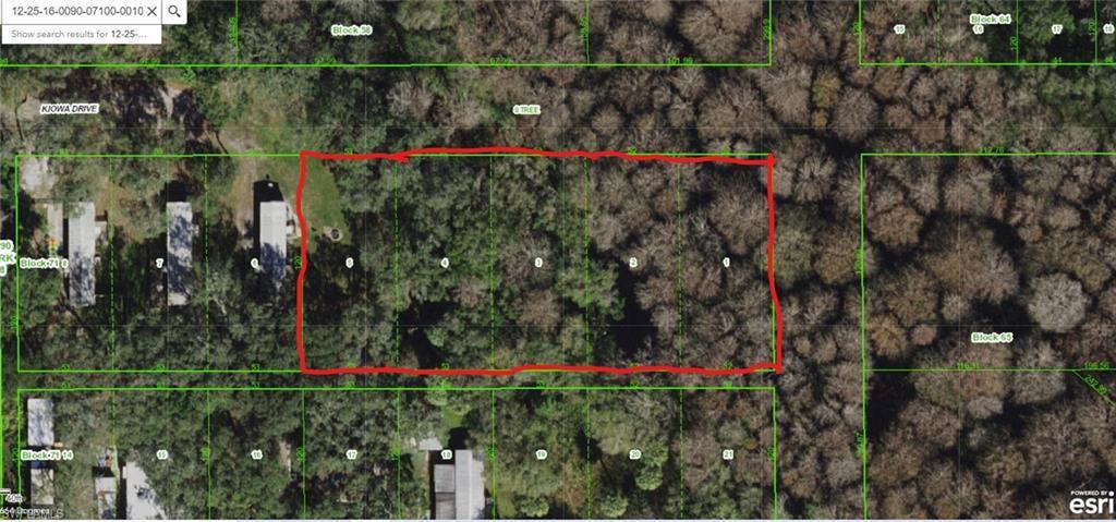 Kiowa Drive Property Photo - NEW PORT RICHEY, FL real estate listing