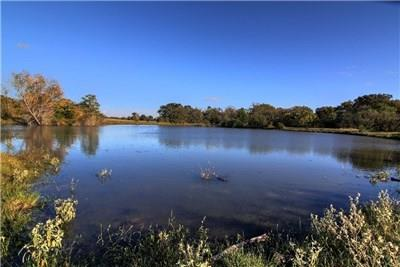 TBD County Road 415, Navasota, TX 77868 - Navasota, TX real estate listing