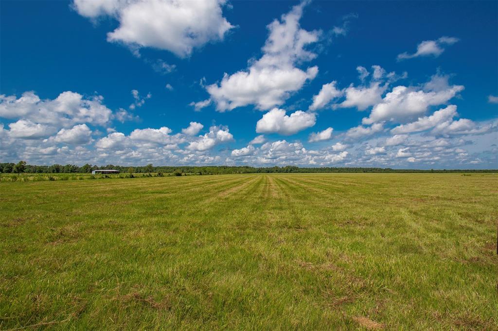 Tract 14 County Road 2285 Property Photo - Tarkington, TX real estate listing