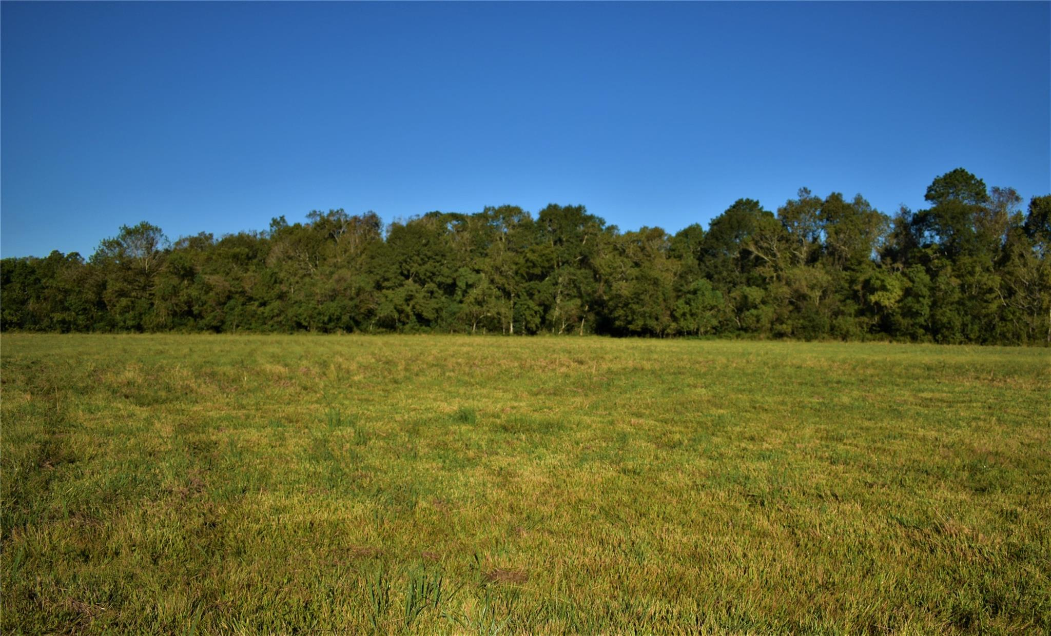 Tbd County Road 2367 Property Photo