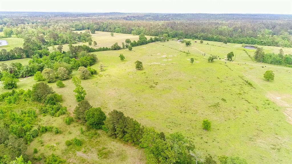 181 Acres Ravenwood Road, Huntsville, TX 77320 - Huntsville, TX real estate listing