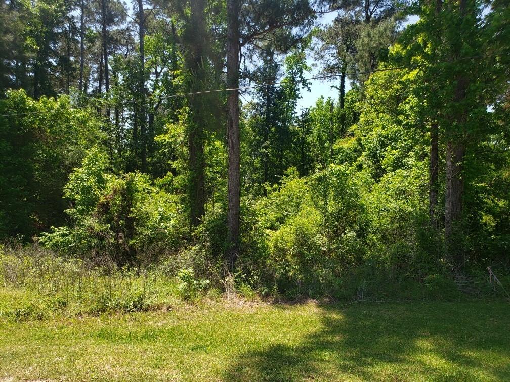 Tbd Briarwood Drive Property Photo