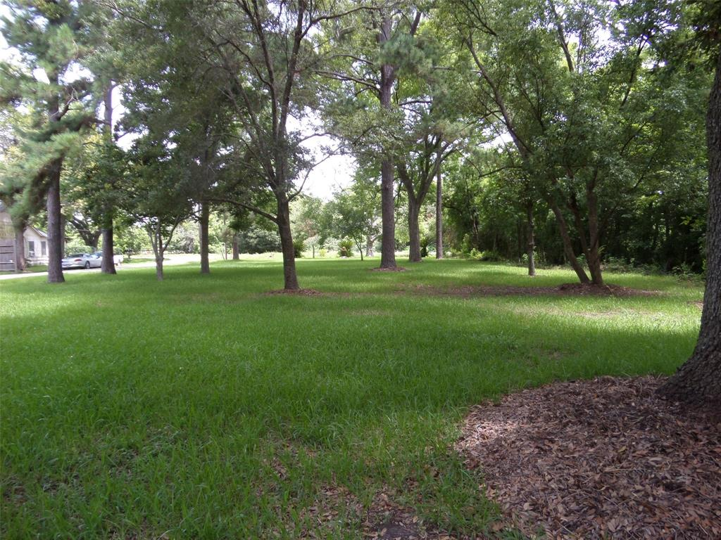 3643 Anderson Road Property Photo - Houston, TX real estate listing
