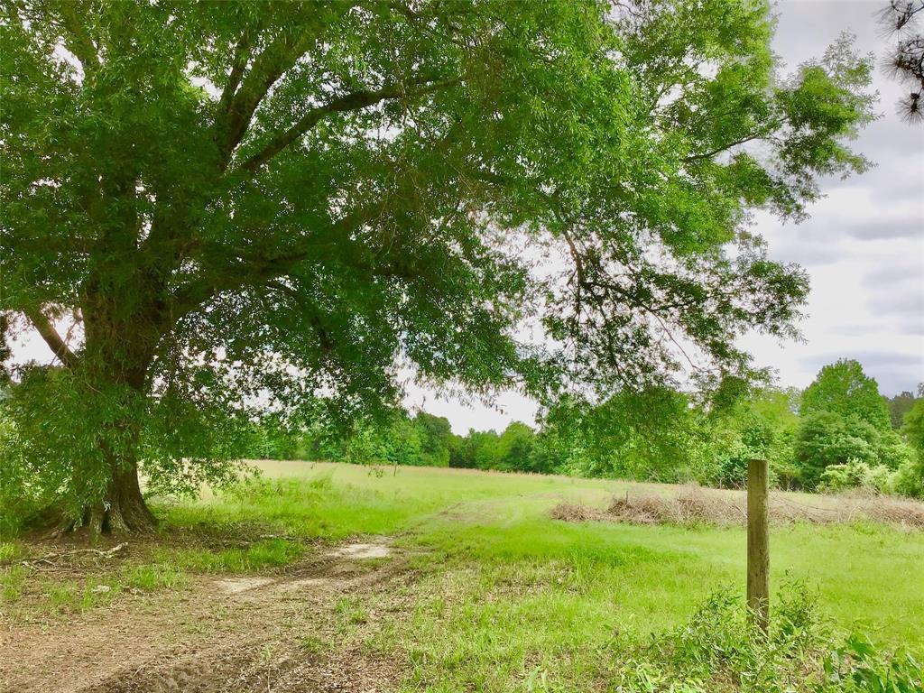 TBD Dwain Hart Drive Property Photo - Batson, TX real estate listing