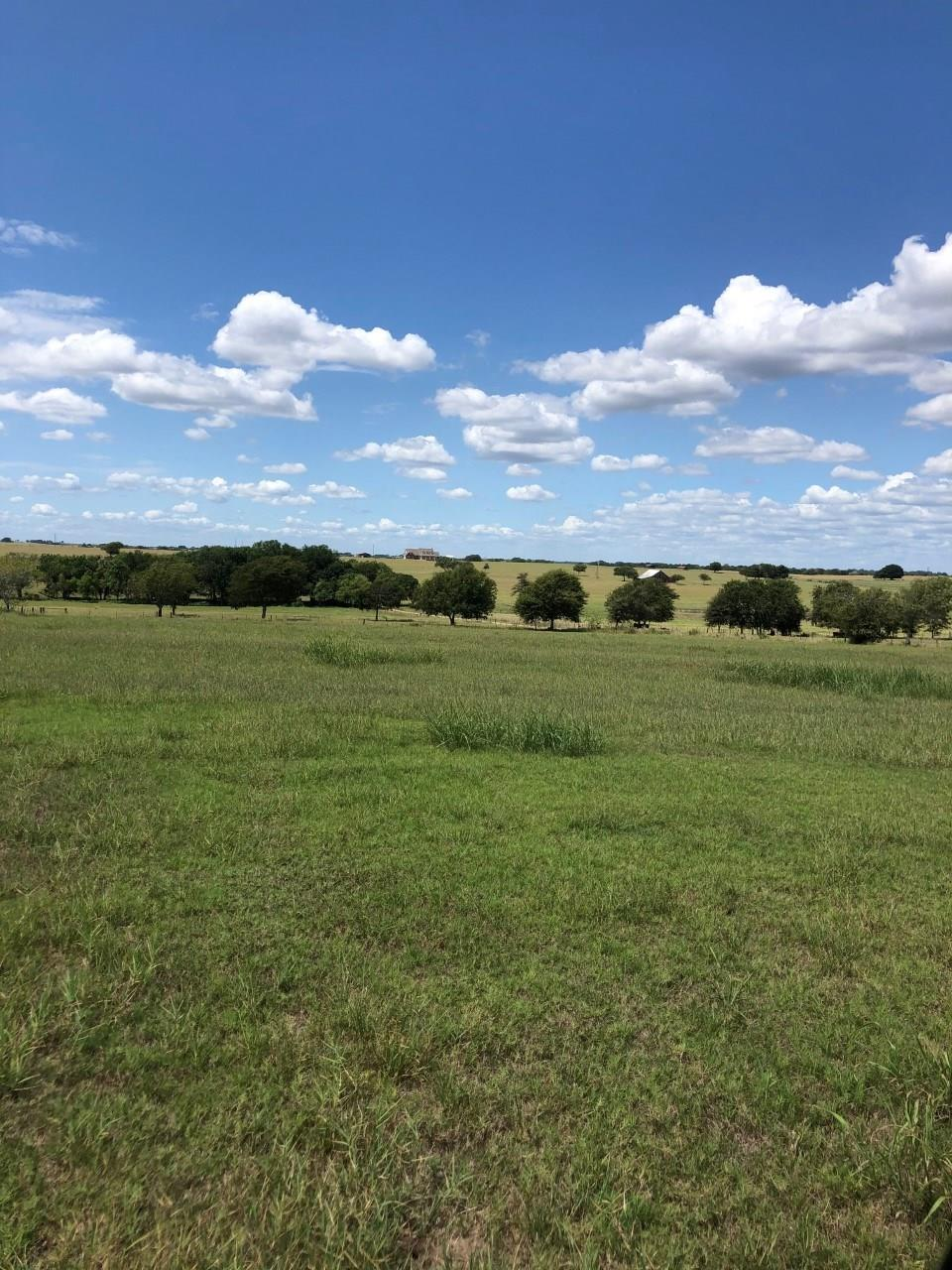 000 FM 1295 Property Photo - Moulton, TX real estate listing