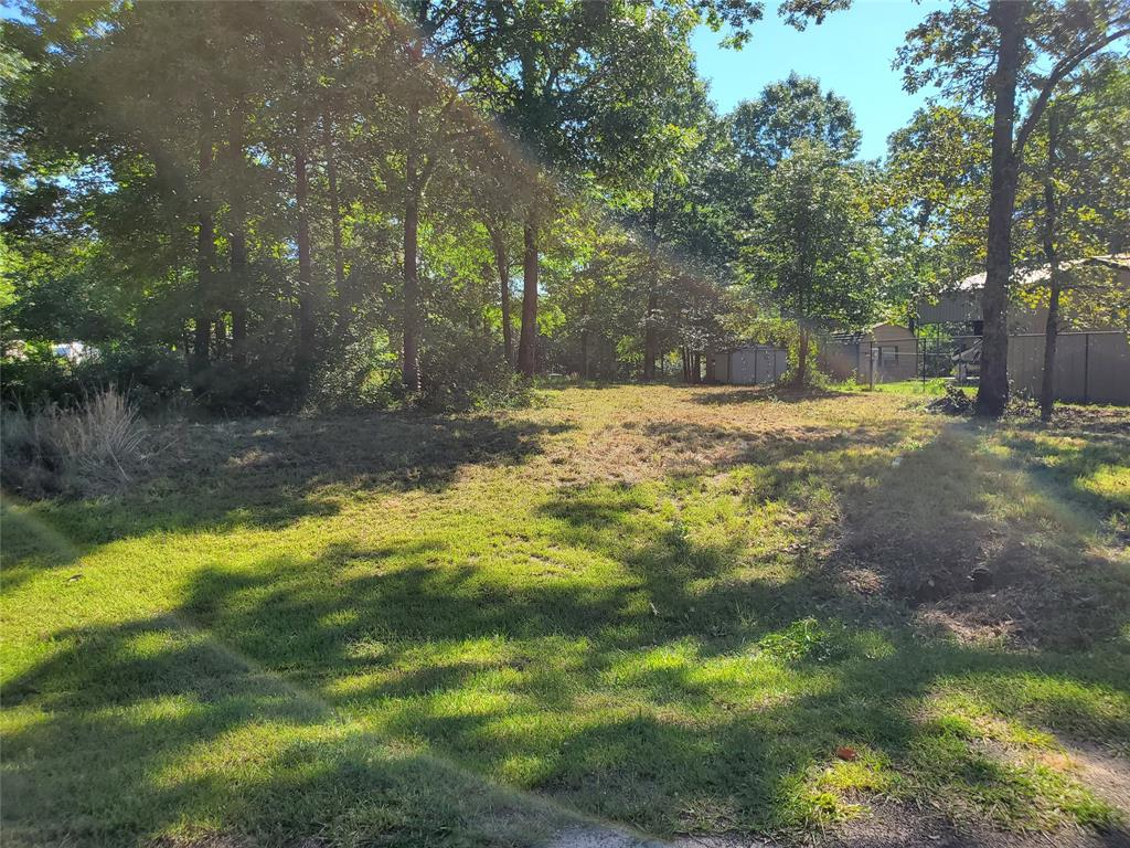 Lot 307 Acorn Drive Property Photo - Point Blank, TX real estate listing