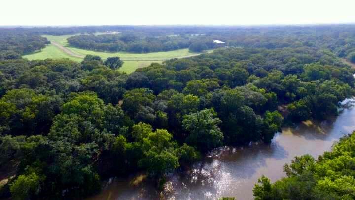 223 River Tree Drive Property Photo - Palacios, TX real estate listing