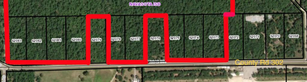 11020 County Road 302, Plantersville, TX 77363 - Plantersville, TX real estate listing