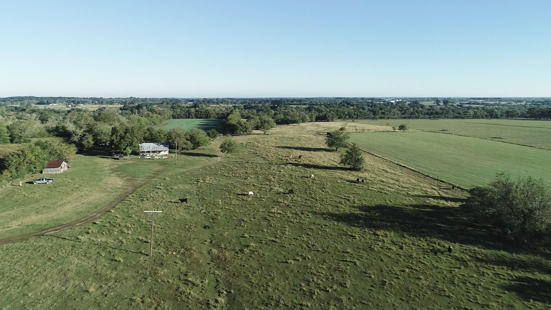 53 Ac Phillips Road Property Photo - Plantersville, TX real estate listing