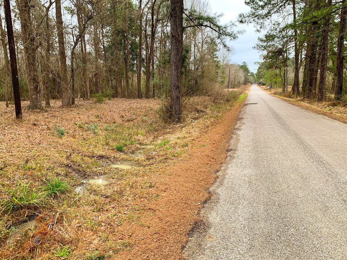 000 CR 482 Property Photo - Kirbyville, TX real estate listing