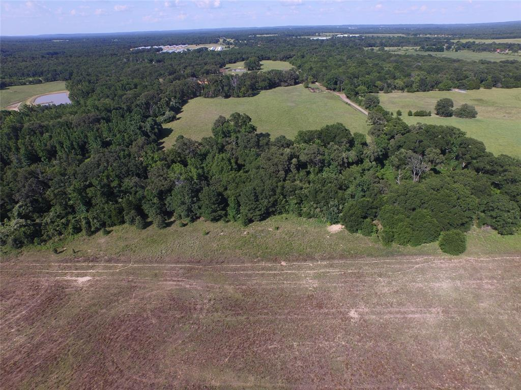 15 Acres ACR 2213 Property Photo - Palestine, TX real estate listing