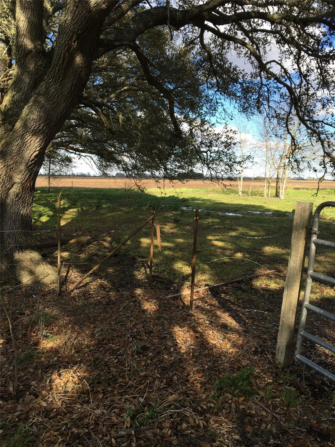 10227 Boone Road Property Photo - Needville, TX real estate listing