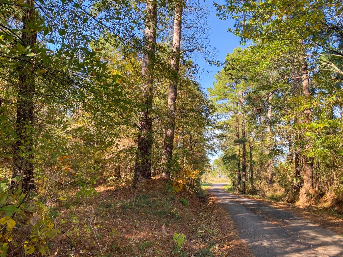 0000 Lightfoot Road Property Photo