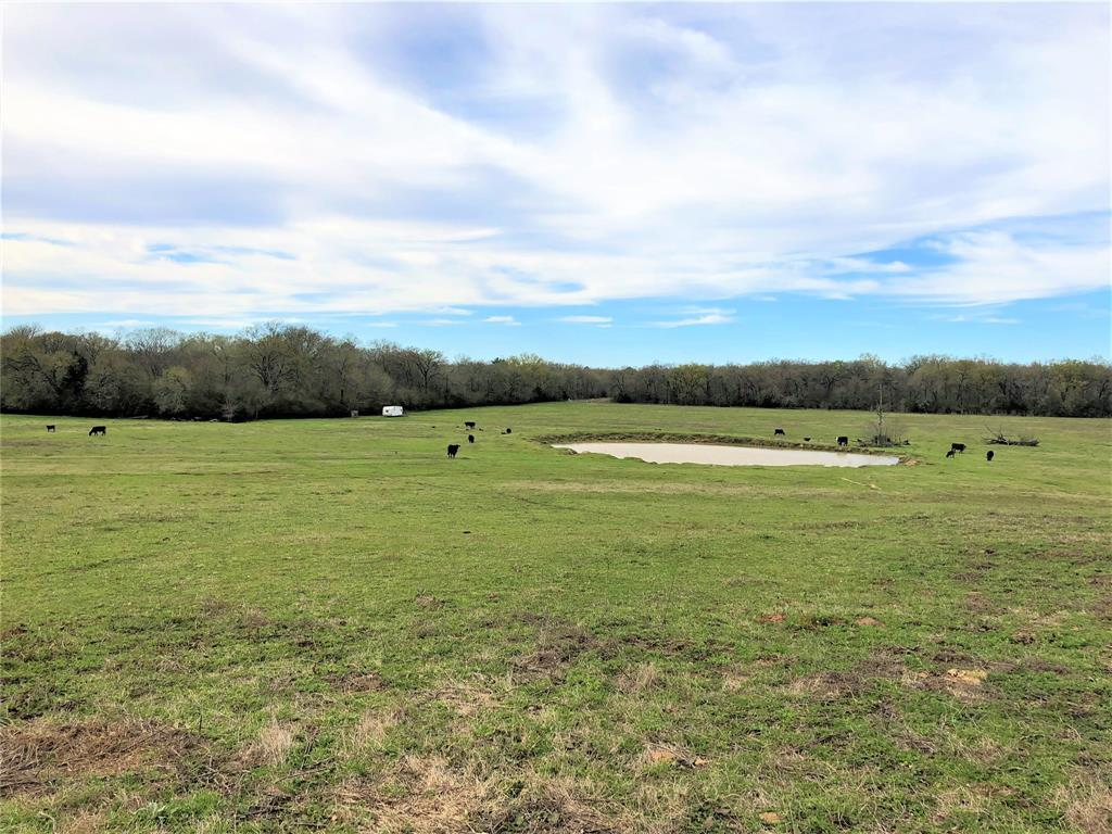 2355 Highway 7 East, Crockett, TX 75835 - Crockett, TX real estate listing