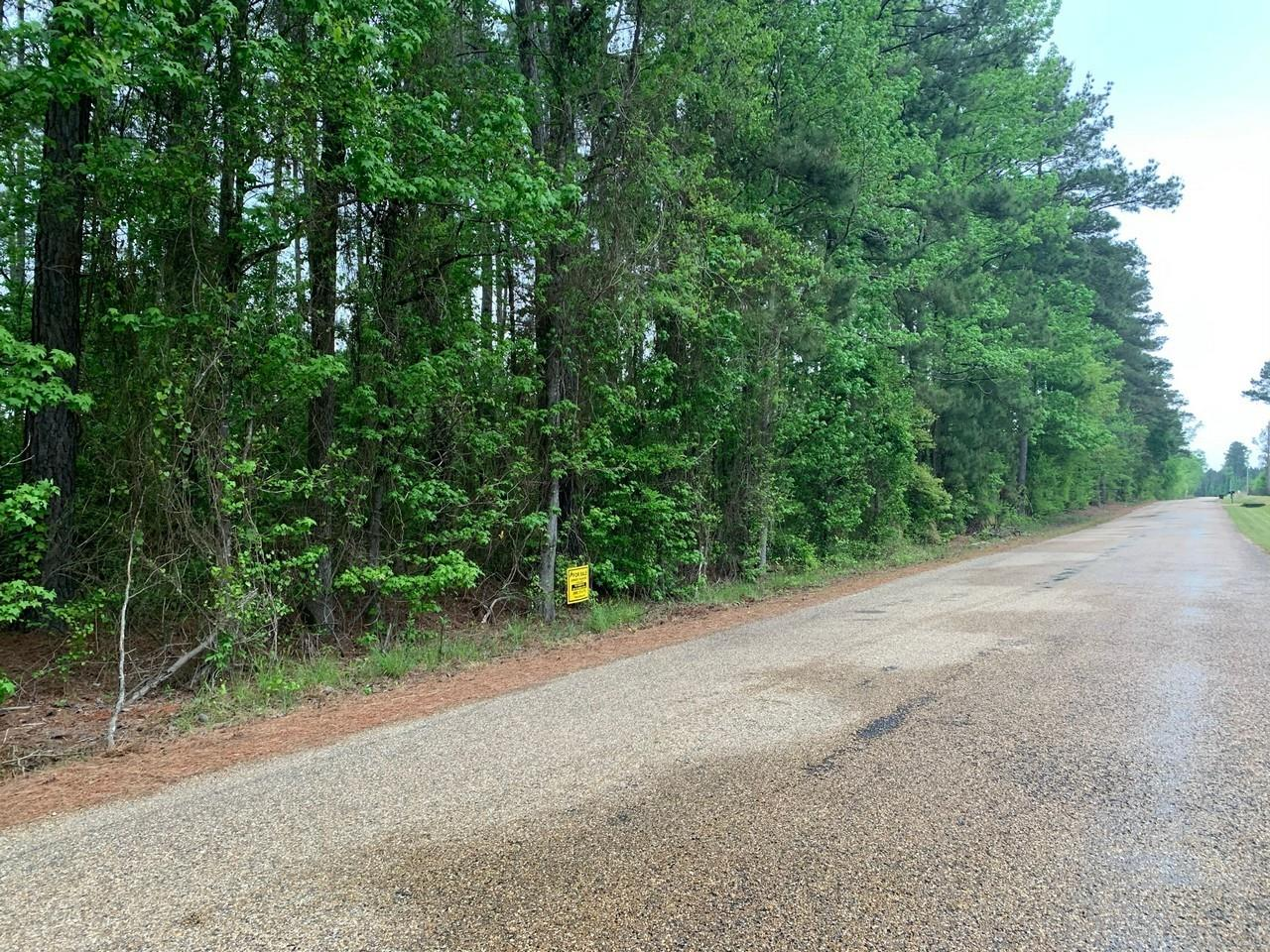 0 Jones Lake Road Property Photo - Other, AR real estate listing