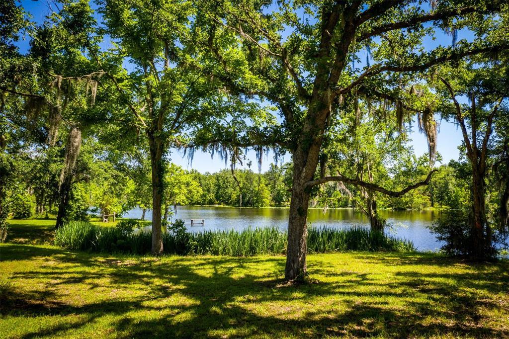 143 Armadillo Drive, Huntsville, TX 77320 - Huntsville, TX real estate listing