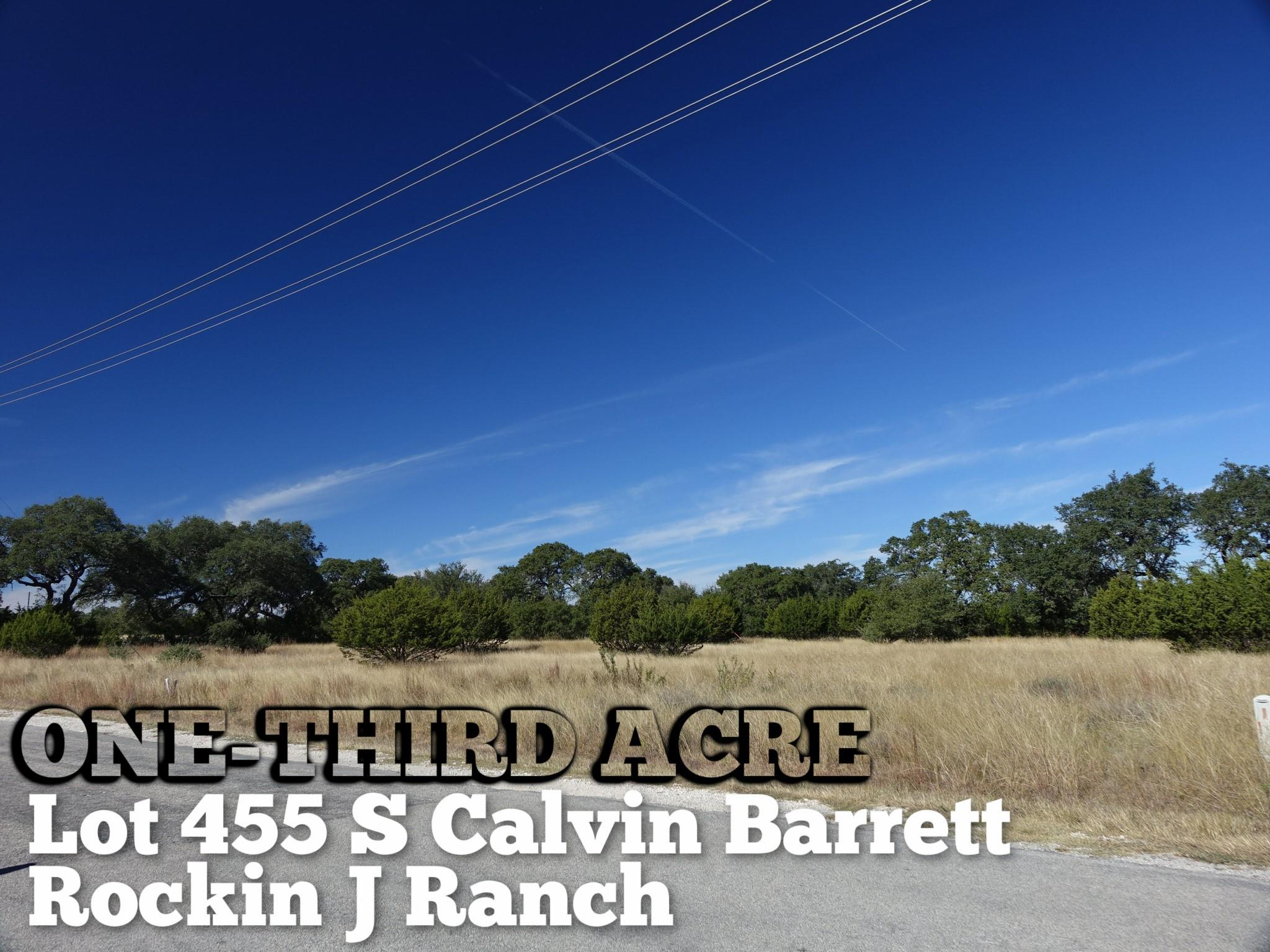 Lot 455 S Calvin Barrett Property Photo - Blanco, TX real estate listing