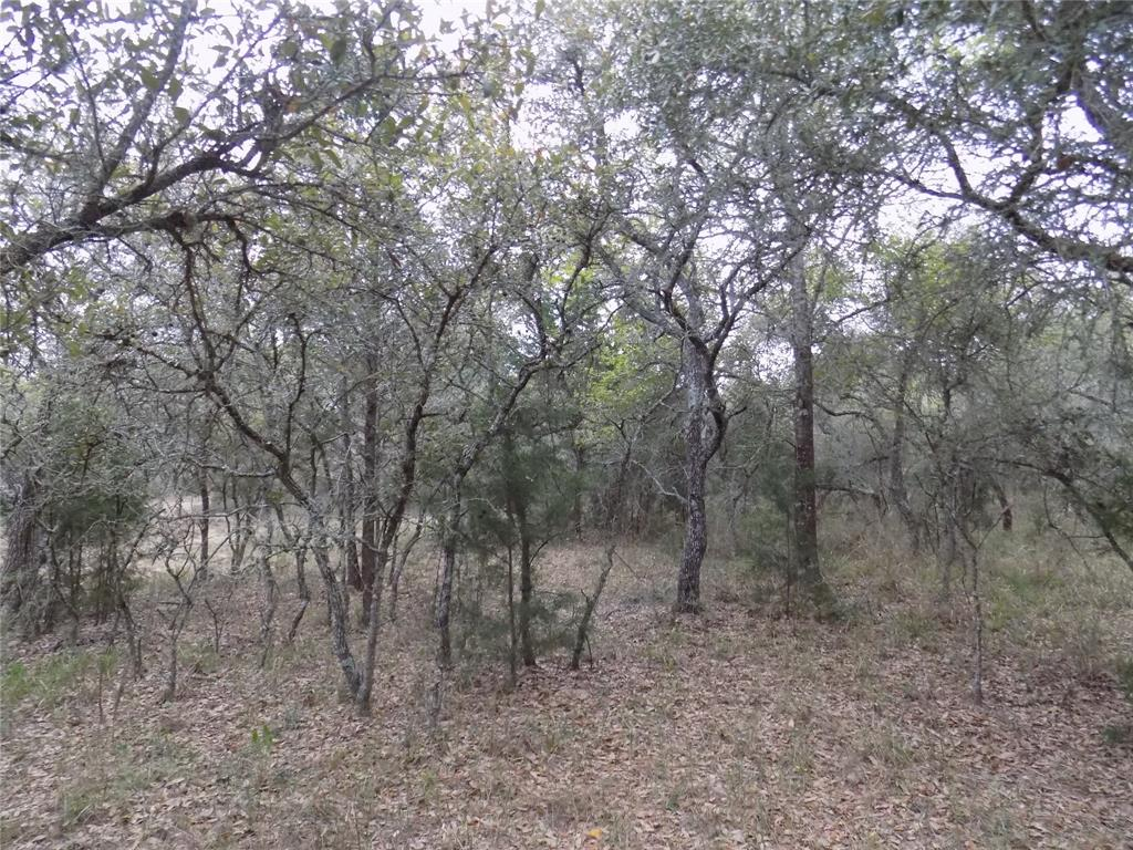 TBD Yaupon Drive Property Photo - Sheridan, TX real estate listing