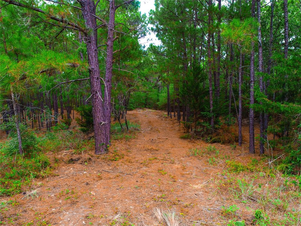 0000 Valley View Trail Property Photo - Winchester, TX real estate listing