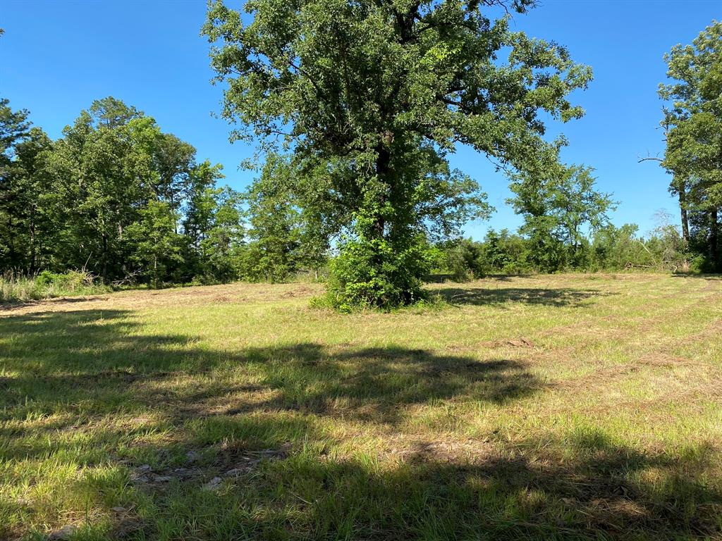 TBD CR 1172 Property Photo - Kennard, TX real estate listing