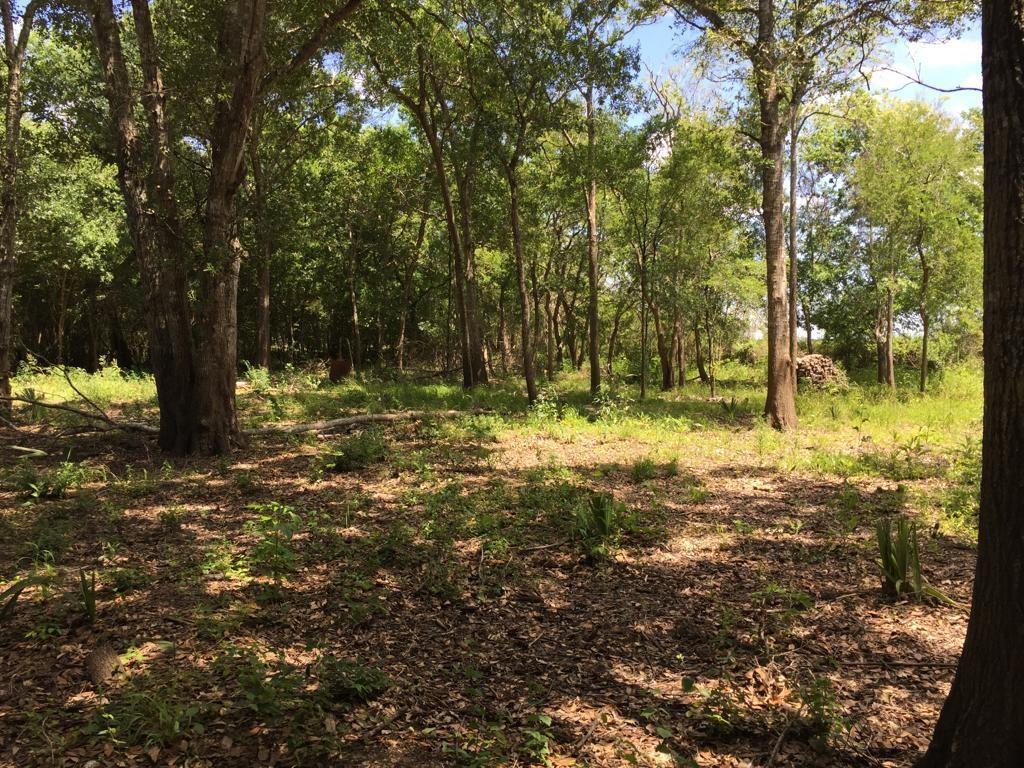 TBD Bayou Dr County Road 848 Property Photo - Danbury, TX real estate listing