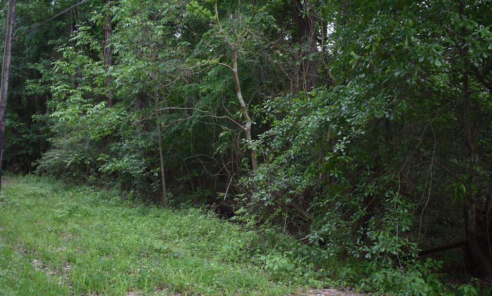 17263 Barker Street Property Photo