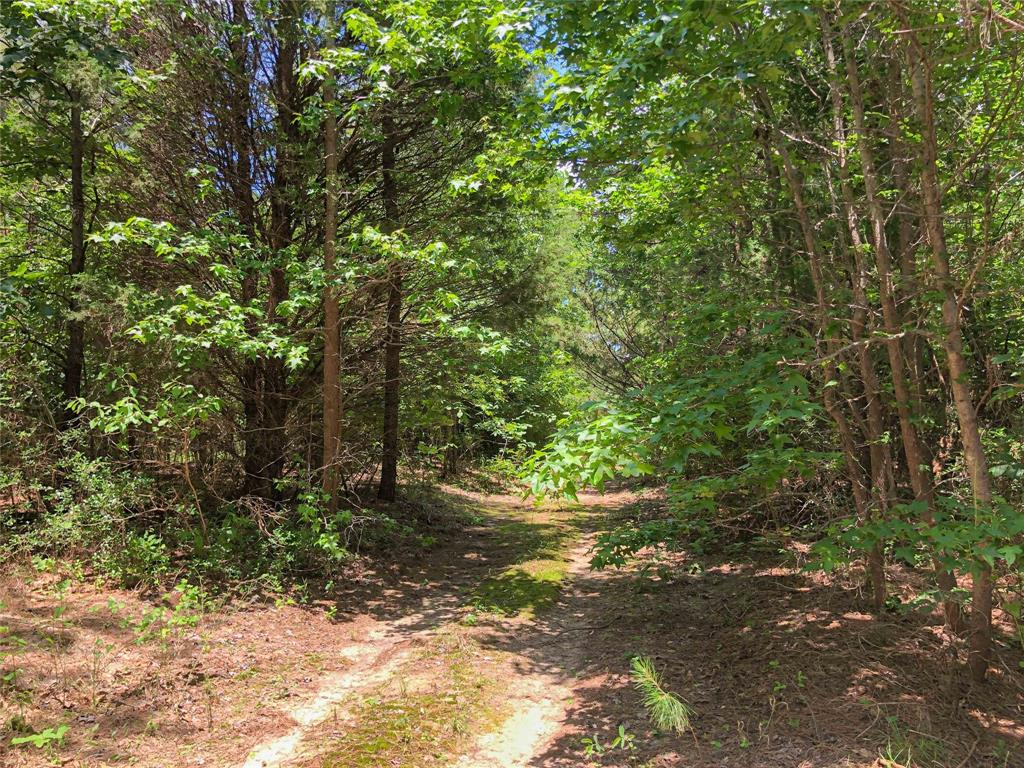 0 Hardy White Rd Property Photo - Rusk, TX real estate listing