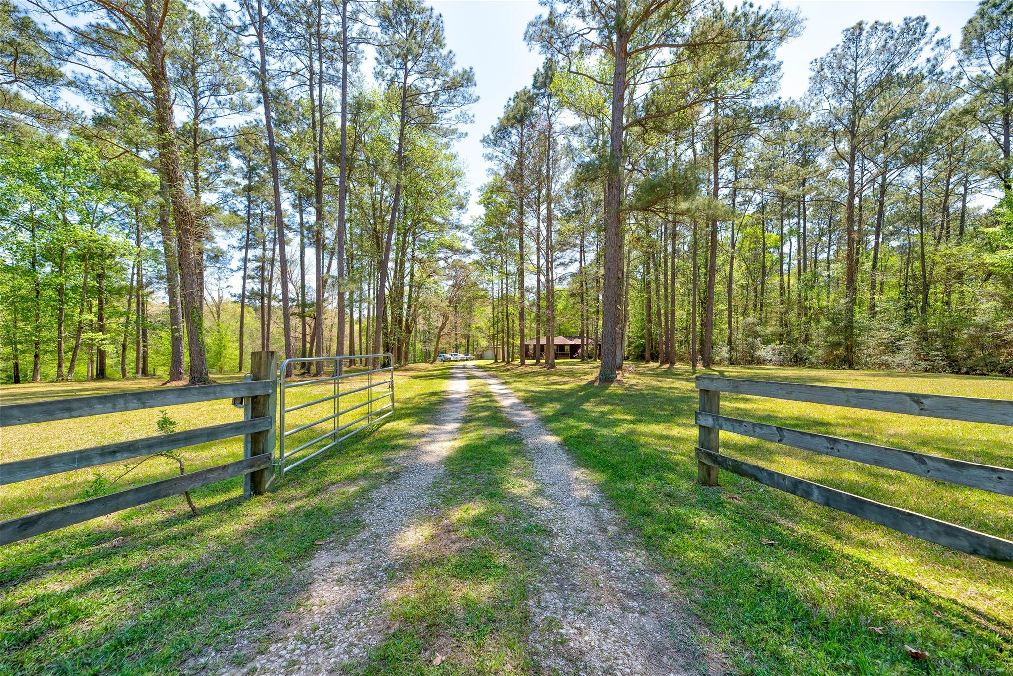 321 Robison Road Property Photo - Coldspring, TX real estate listing
