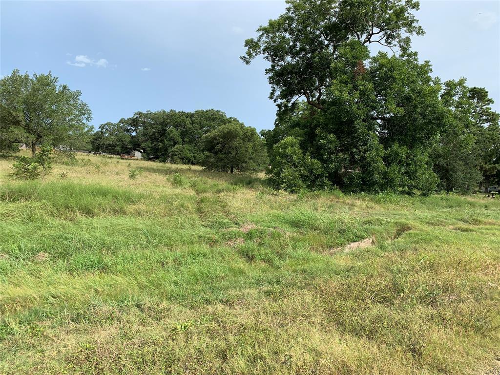00 FM 2817, Boling, TX 77488 - Boling, TX real estate listing