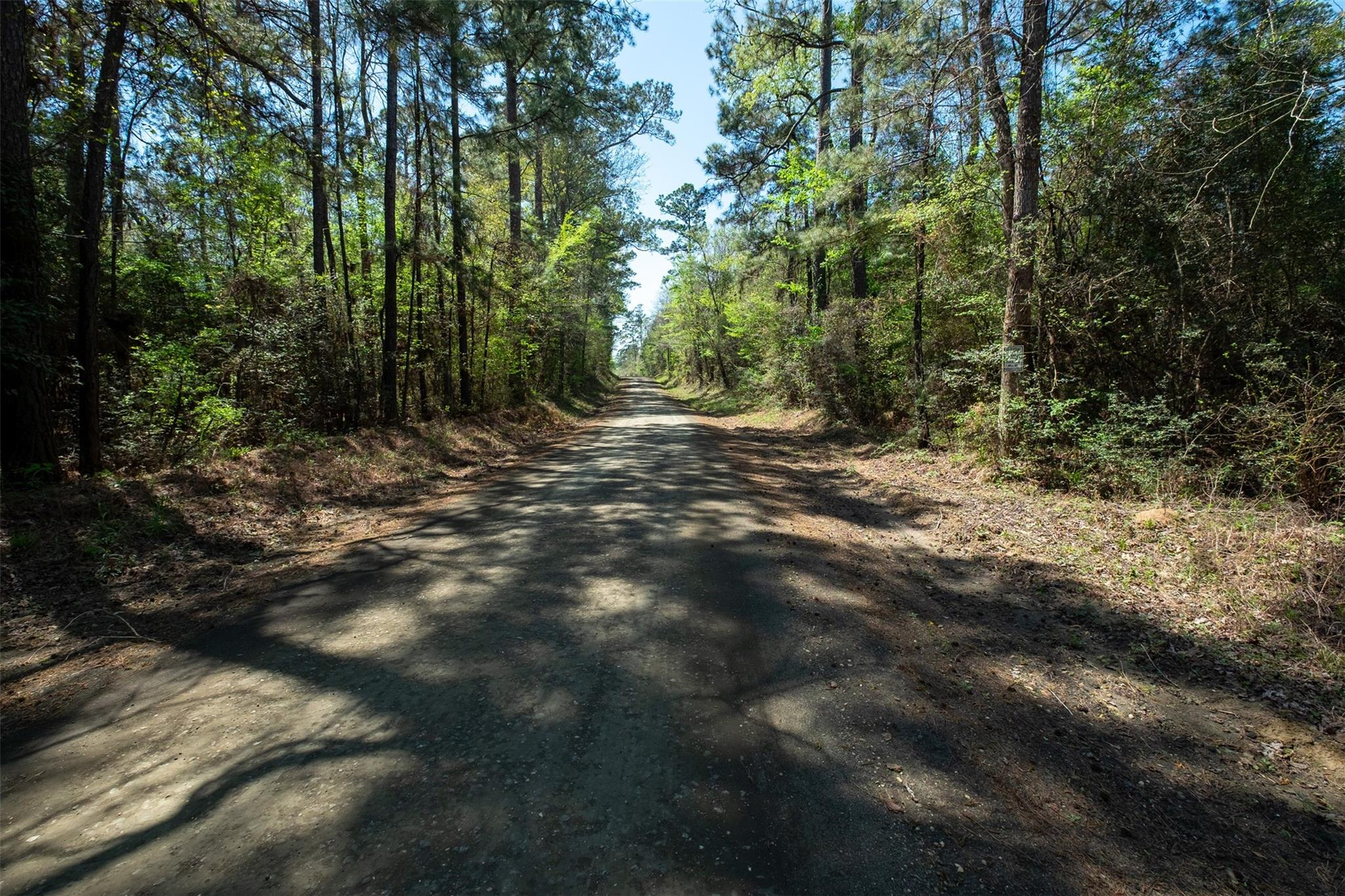 Tbd County Road 3650 Property Photo