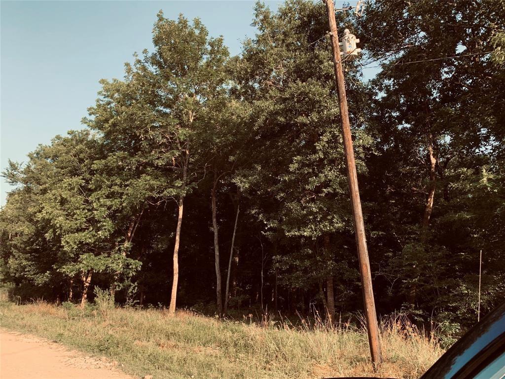 TBD Cottonwood Property Photo - Dayton Lakes, TX real estate listing