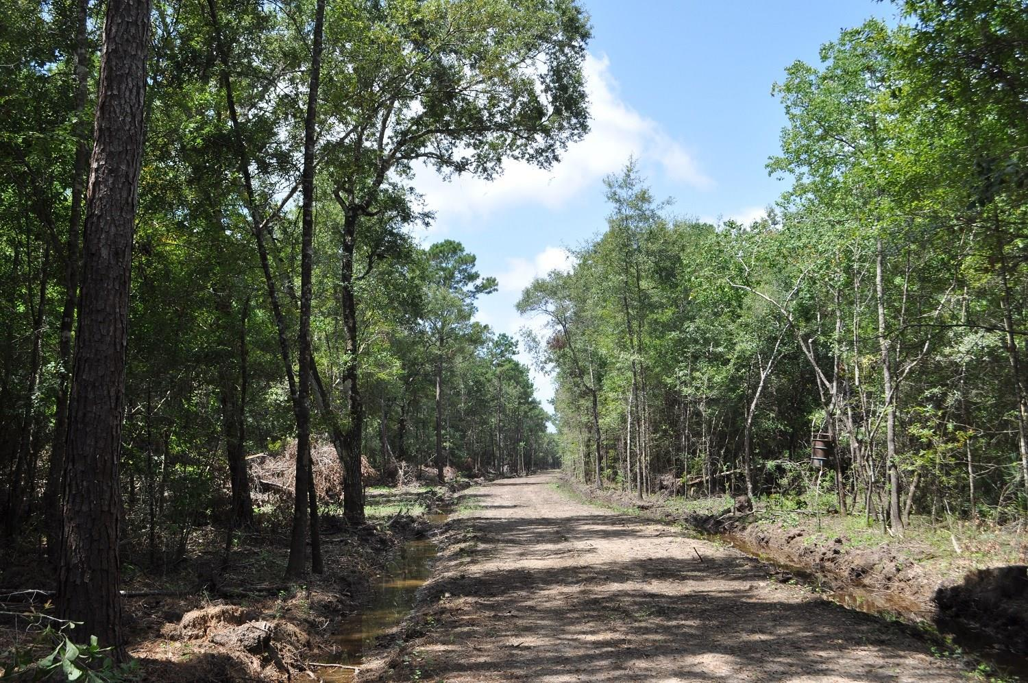 00 Bevil Wright Road Property Photo - Batson, TX real estate listing