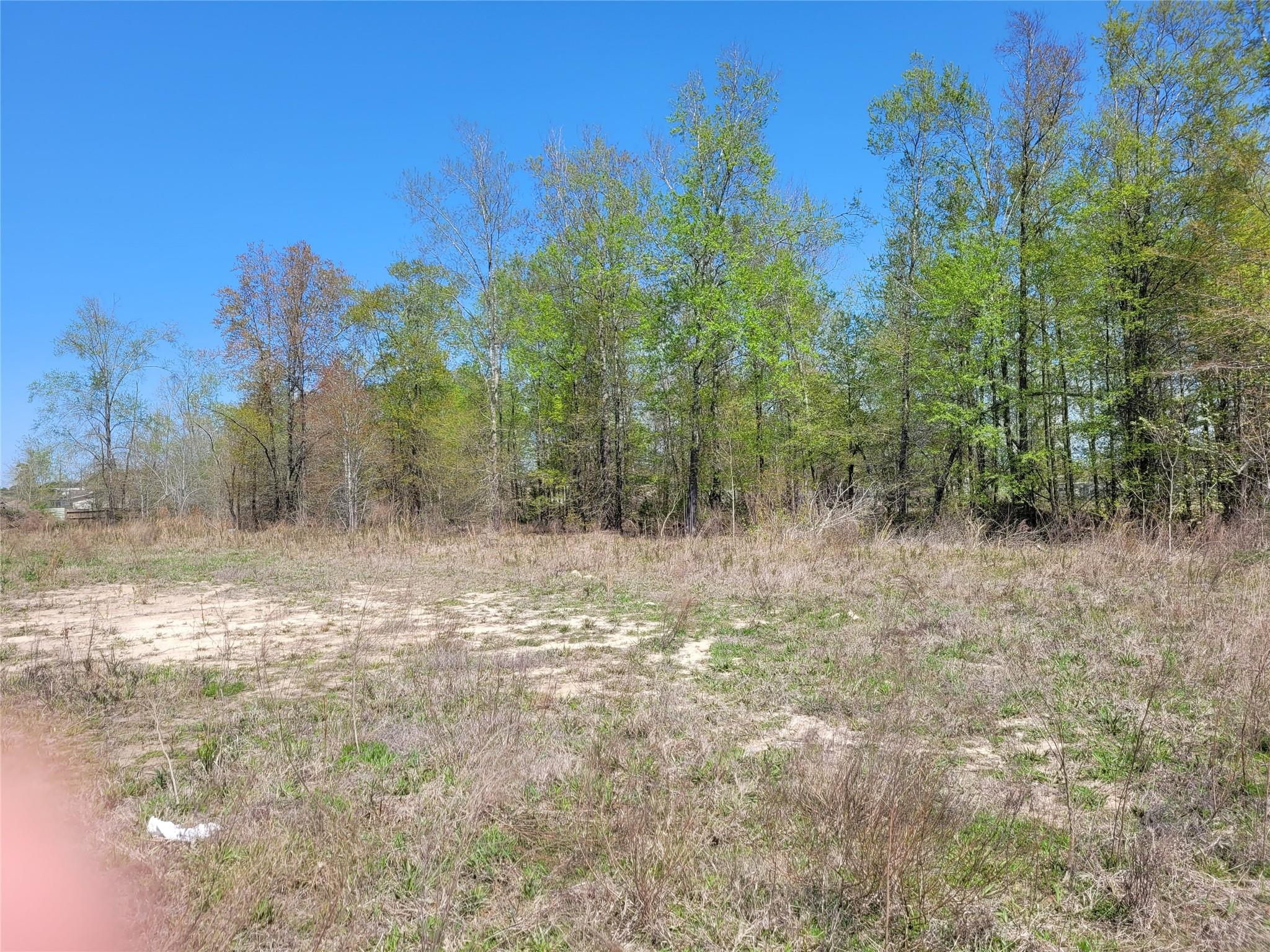 1025 County Road 3558 Property Photo