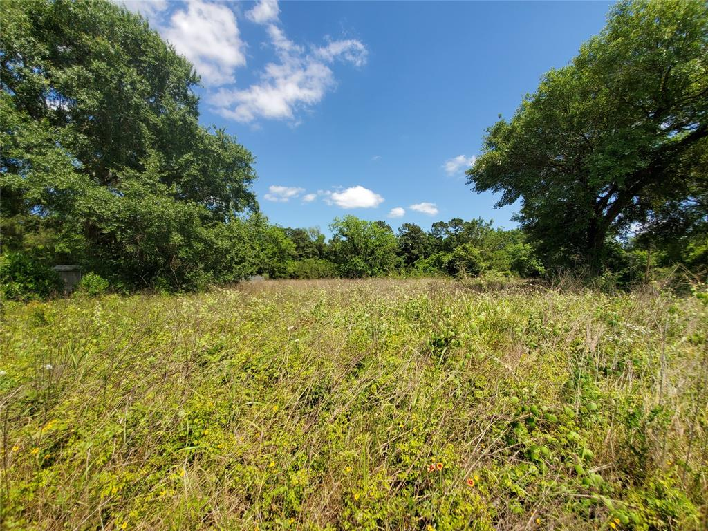 6355 US Highway 59 S Property Photo - Goodrich, TX real estate listing