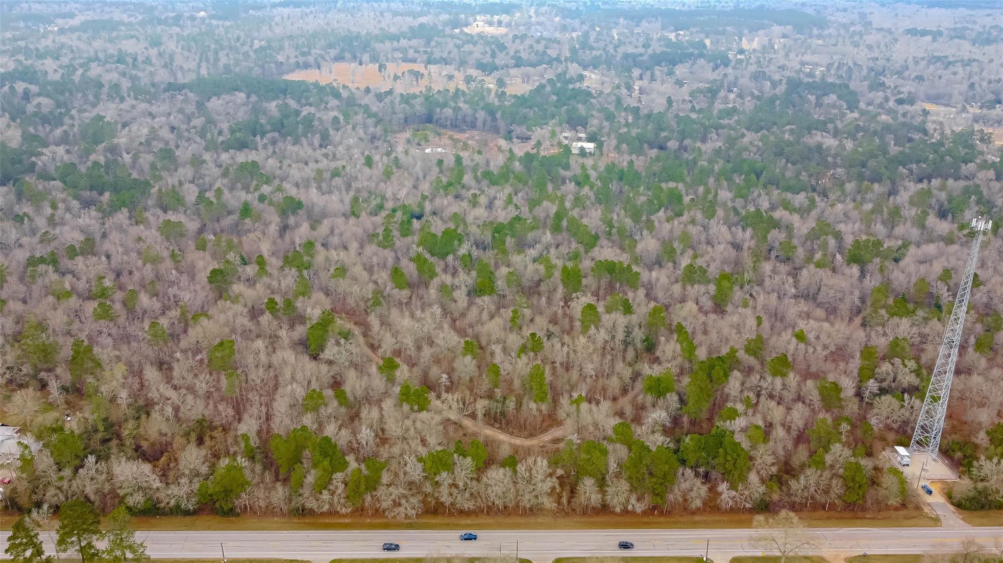 TBD FM 2090 Highway W Property Photo - Conroe, TX real estate listing
