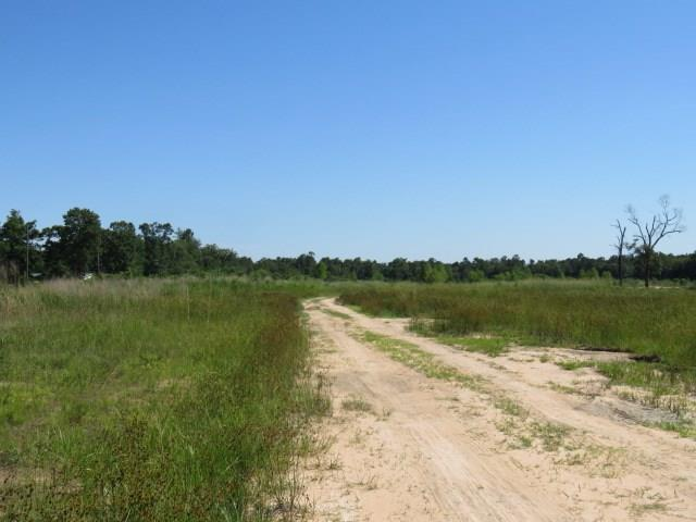 18500 Fm 2090 Road Property Photo - Conroe, TX real estate listing