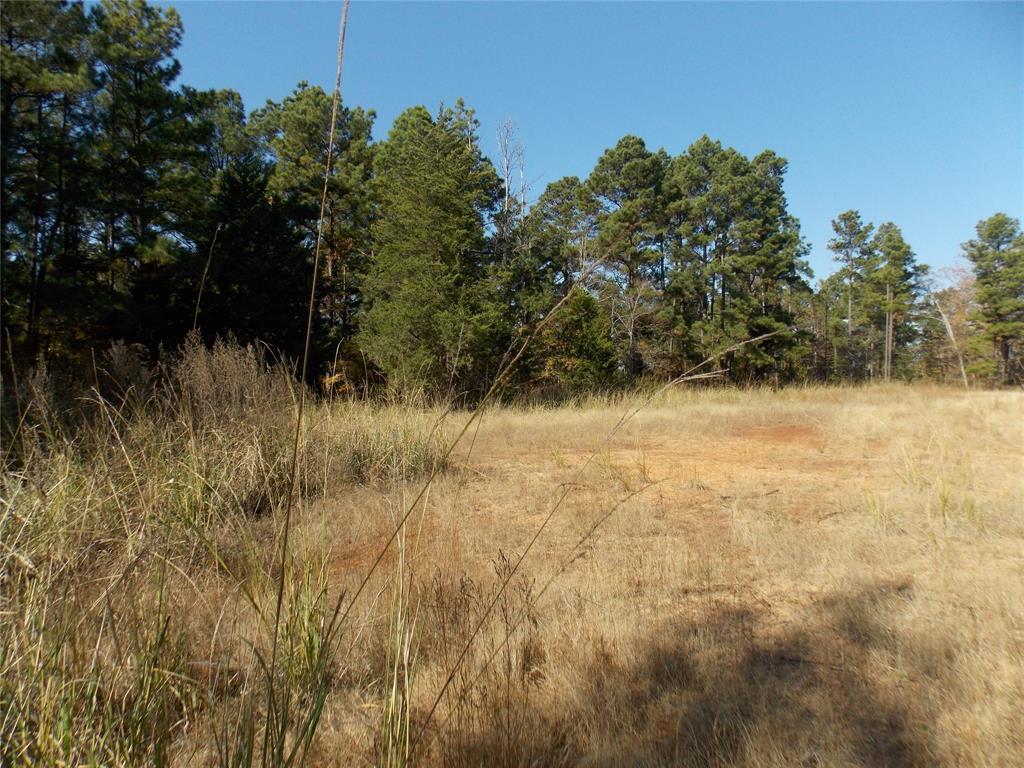 TBD CR 3311 Property Photo - Jacksonville, TX real estate listing