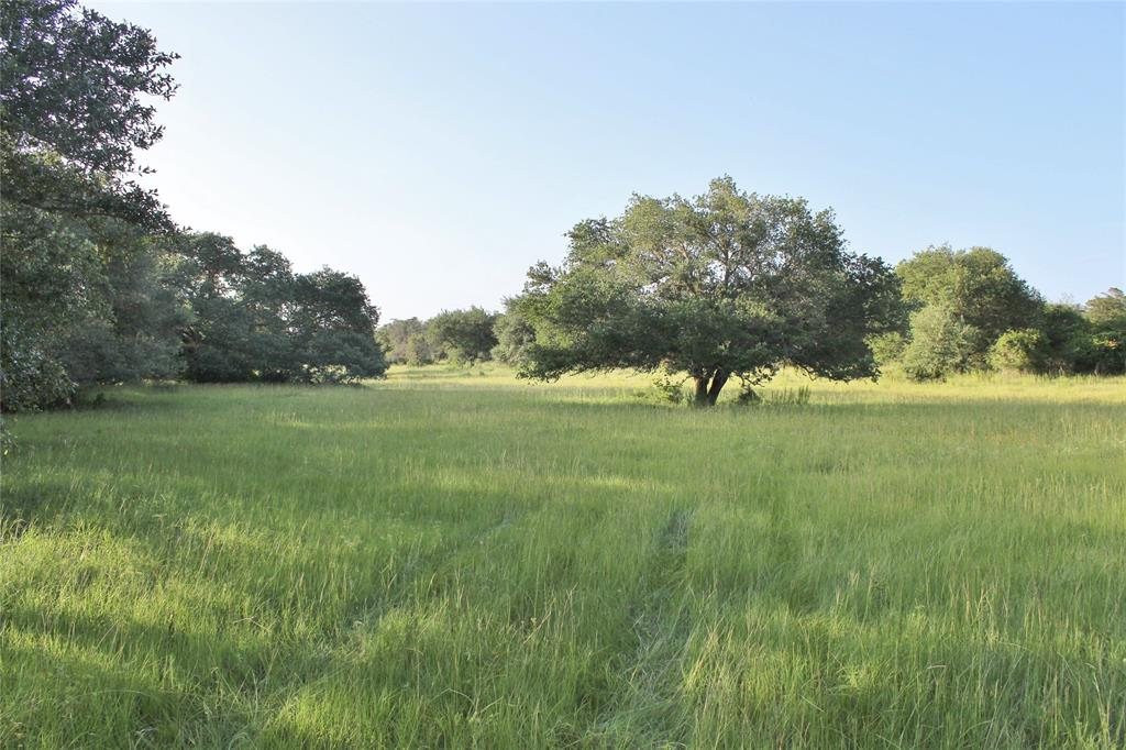 0 Koeppens Trail, Cat Spring, TX 78933 - Cat Spring, TX real estate listing