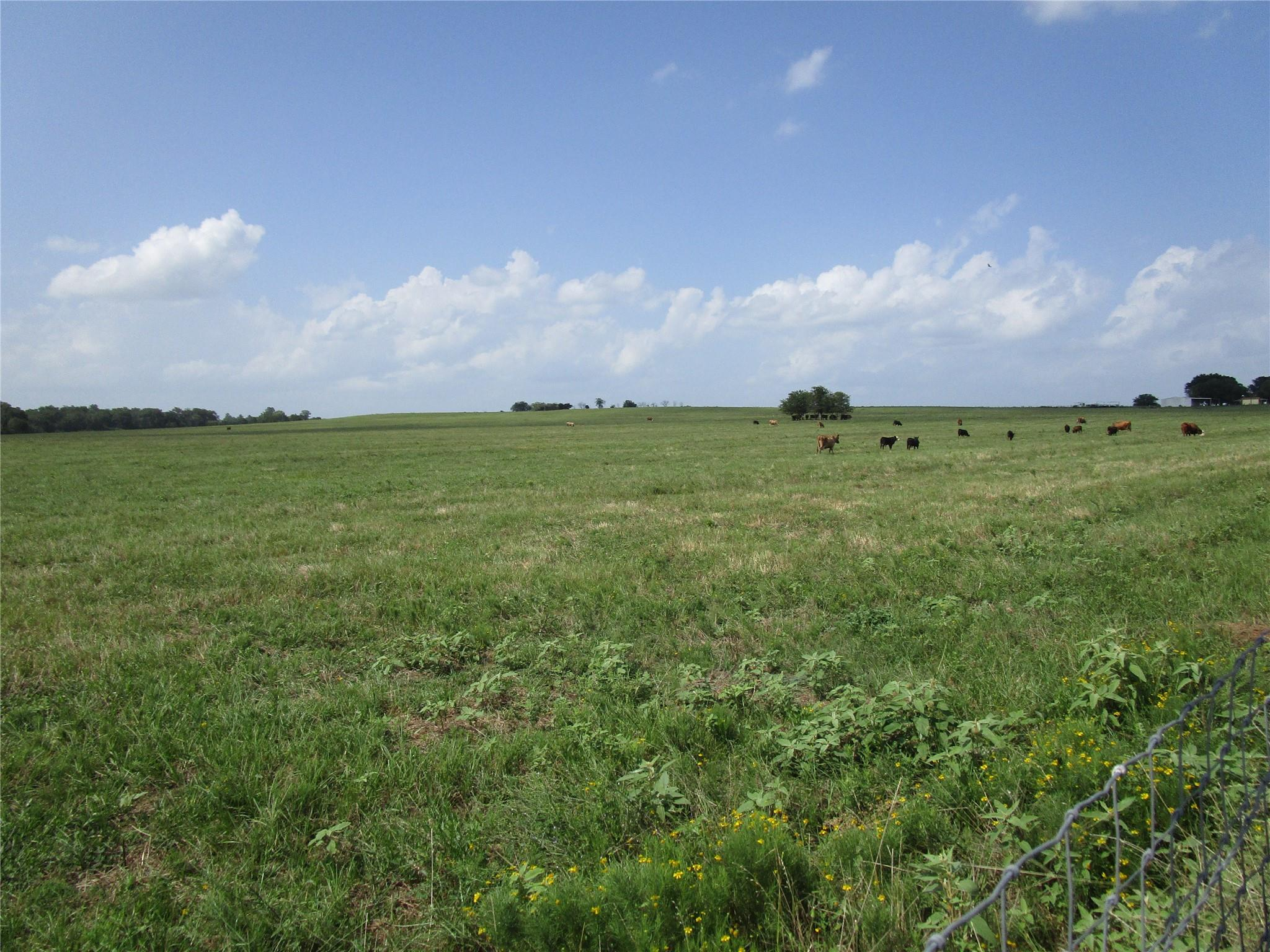 2355 E State Hwy 7 Property Photo - Crockett, TX real estate listing