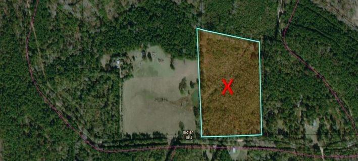 0 County Rd 1090 Property Photo - Wiergate, TX real estate listing