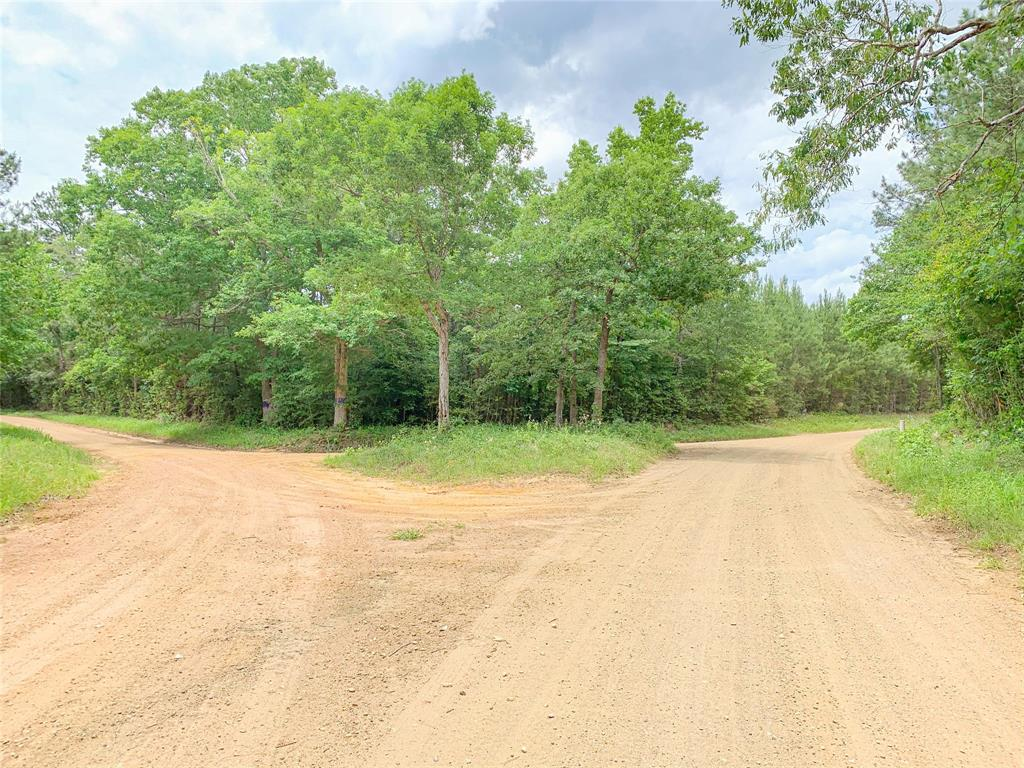 0000 CR 4520 Property Photo - Warren, TX real estate listing
