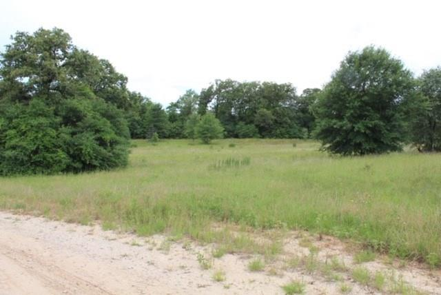 TBD County Road 336 Property Photo - Jewett, TX real estate listing