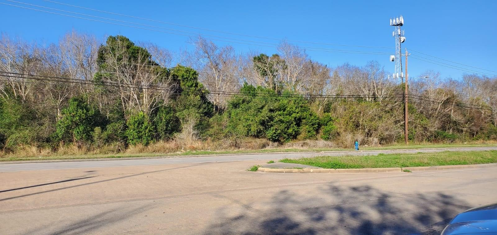 2655 Reed Road Property Photo