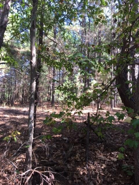 0 ACR 353 OFF Property Photo - Neches, TX real estate listing