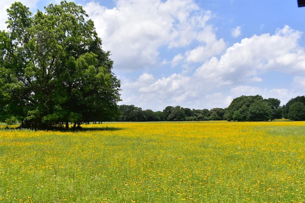 6181 County Road 353 Property Photo - Gause, TX real estate listing